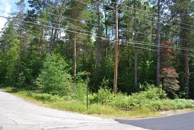 Saranac Lake Residential Lots & Land For Sale: McKenzie Pond Rd/Davin Ln