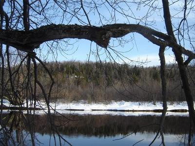 Saranac Lake NY Residential Lots & Land For Sale: $90,000