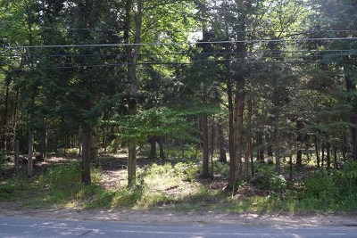 Residential Lots & Land For Sale: Mirror Lake Drive