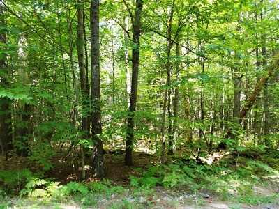 Essex County Residential Lots & Land For Sale: Aspen Ln