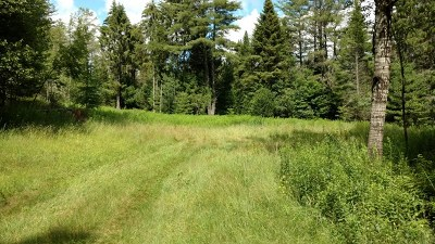Residential Lots & Land For Sale: 311 Cold Brook Road