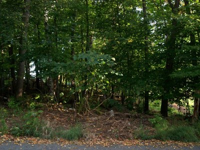 Saranac Lake NY Residential Lots & Land For Sale: $12,000