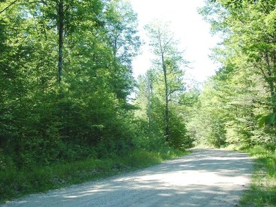 Essex County Residential Lots & Land For Sale: Lot 137 River Road