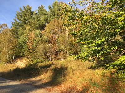 Saranac Lake Residential Lots & Land For Sale: 37 Saranac Lane