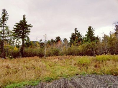 Essex County Residential Lots & Land For Sale: 13 Danielle Rd