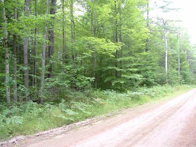 Essex County Residential Lots & Land For Sale: Spruce Ln