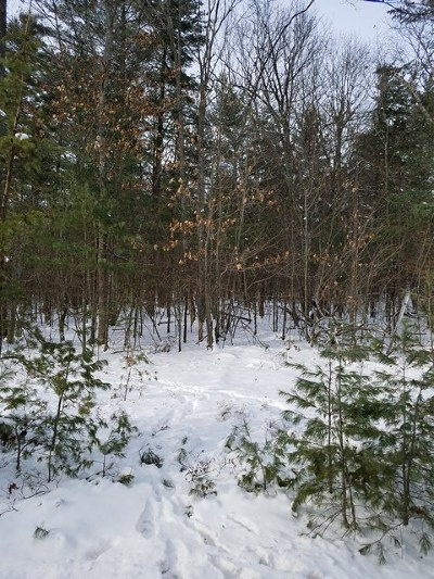Essex County Residential Lots & Land For Sale: Sawmill Rd