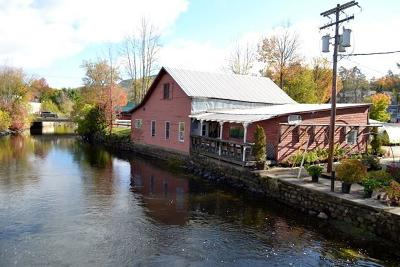 Saranac Lake NY Commercial For Sale: $475,000