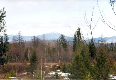 Saranac Lake NY Residential Lots & Land For Sale: $150,000