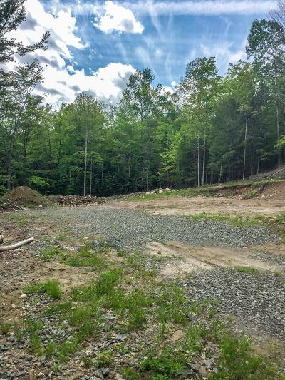 Essex County Residential Lots & Land For Sale: 3153 Nys Rte. 73