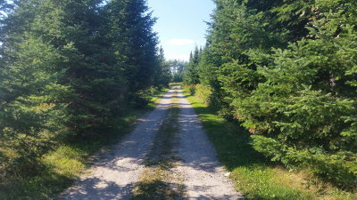 Saranac Lake Residential Lots & Land For Sale: 4 Asplin Meadows Lot 4
