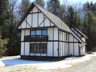Elizabethtown, Jay, Keene, Keene Valley, Lake Placid, Westport, Wilmington, Loon Lake, Rainbow Lake, Saranac Lake, Tupper Lake Single Family Home For Sale: 1636 State Route 30