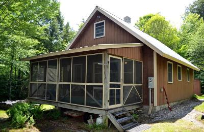 Lake Placid, Saranac Lake, Tupper Lake Single Family Home For Sale: 823 Pork Bay