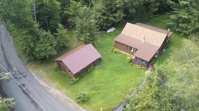 Tupper Lake NY Single Family Home For Sale: $375,000