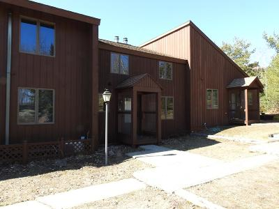 Tupper Lake NY Condo/Townhouse For Sale: $175,000