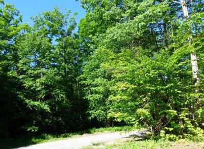 Lake Placid NY Residential Lots & Land For Sale: $97,000