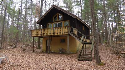 Elizabethtown, Jay, Keene, Keene Valley, Lake Placid, Saranac Lake, Westport, Wilmington, Loon Lake, Rainbow Lake, Tupper Lake Single Family Home For Sale: 16 Dogwood St