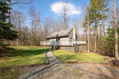 Essex County Single Family Home For Sale: 184 Sequoia Mountain Ln