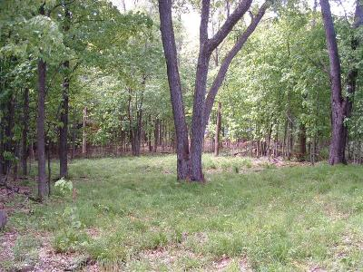 Essex County Residential Lots & Land For Sale: 84 Barnard Street