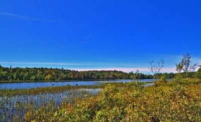 Lake Clear NY Residential Lots & Land For Sale: $225,000