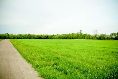 Franklin County Residential Lots & Land For Sale: 323 County Route 16- Lot #2