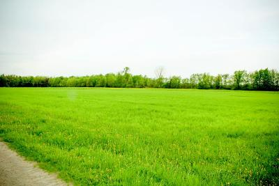Franklin County Residential Lots & Land For Sale: 323 County Route 16- Lot #3