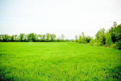 Franklin County Residential Lots & Land For Sale: 323 County Route 16- Lot #4