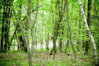 Franklin County Residential Lots & Land For Sale: 323 County Route 16- Lot #6
