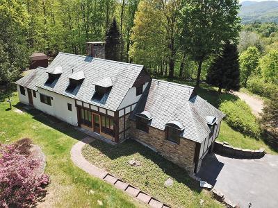 Elizabethtown, Jay, Keene, Keene Valley, Lake Placid, Saranac Lake, Westport, Wilmington, Loon Lake, Rainbow Lake, Tupper Lake Single Family Home For Sale: 63 High Meadows Ln