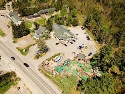 Lake Placid Commercial For Sale: 1991 Saranac Ave