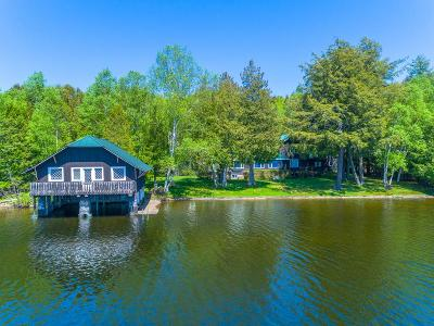 Lake Placid, Saranac Lake, Tupper Lake Single Family Home For Sale: 22 Deerpath Ln