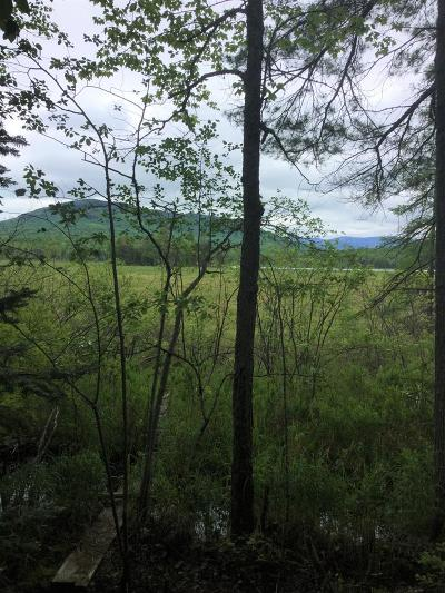 Saranac Lake NY Residential Lots & Land For Sale: $115,000