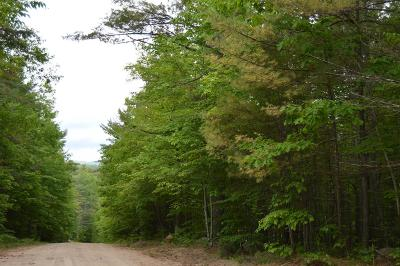 Essex County Residential Lots & Land For Sale: Mohawk Trail