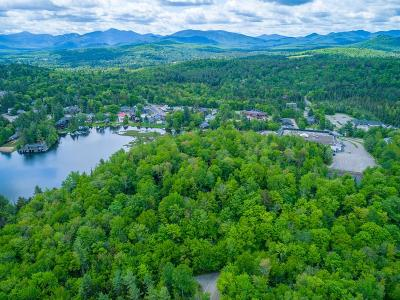 Bloomingdale, Lake Placid, North Elba, Ray Brook, St Armand, Brighton, Franklin, Gabriels, Harrietstown, Lake Clear, Lake Titus, Loon Lake, Onchiota, Paul Smiths, Rainbow Lake, Santa Clara, Saranac Inn, Saranac Lake, Upper Saranac Lake, Vermontville Commercial For Sale: Peninsula Way