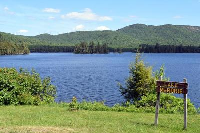 Tupper Lake, Long Lake, Cranberry Lake, Star Lake Single Family Home For Sale: Kickerville Road