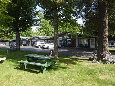Tupper Lake NY Commercial For Sale: $425,000