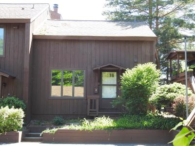 Lake Placid, Saranac Lake, Tupper Lake Single Family Home For Sale: 8 Parkridge