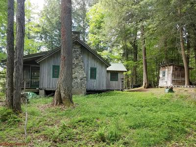 Saranac Lake NY Single Family Home For Sale: $450,000