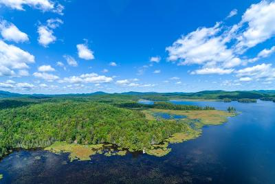 Saranac Lake NY Residential Lots & Land For Sale: $450,000