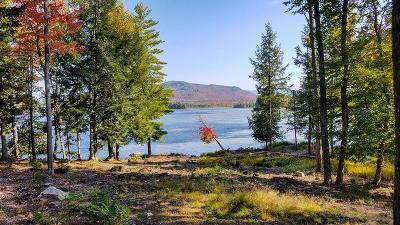 Saranac Lake NY Residential Lots & Land For Sale: $675,000