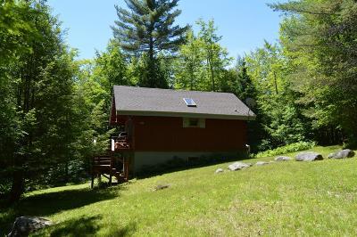 Elizabethtown, Jay, Keene, Keene Valley, Lake Placid, Saranac Lake, Westport, Wilmington, Loon Lake, Rainbow Lake, Tupper Lake Single Family Home For Sale: 36 Dew Drive