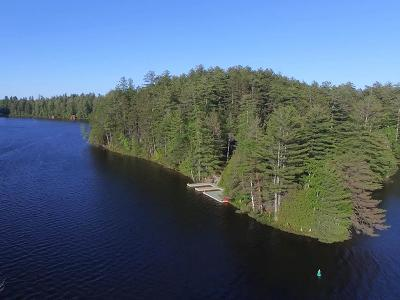 Bloomingdale, Lake Placid, North Elba, Ray Brook, St Armand, Brighton, Franklin, Gabriels, Harrietstown, Lake Clear, Lake Titus, Loon Lake, Onchiota, Paul Smiths, Rainbow Lake, Santa Clara, Saranac Inn, Saranac Lake, Upper Saranac Lake, Vermontville Single Family Home For Sale: 19 Heron Lane