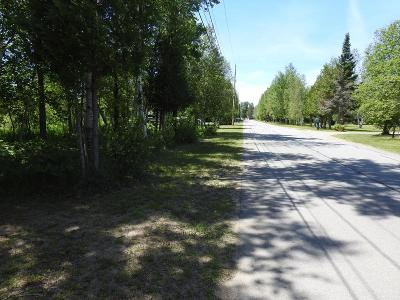 Tupper Lake NY Residential Lots & Land For Sale: $29,900