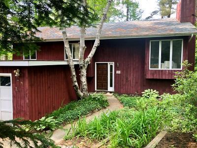 Lake Placid NY Single Family Home For Sale: $395,000