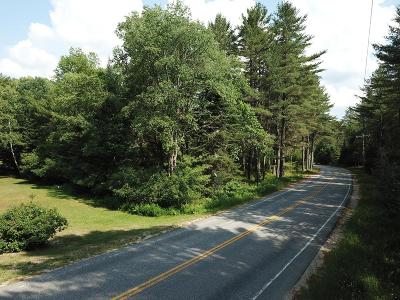 Residential Lots & Land For Sale: McKenzie Pond Road