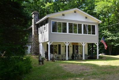 Lake Placid, Saranac Lake, Tupper Lake Single Family Home For Sale: 141 Hoel Pond Rd