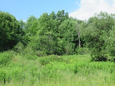 Residential Lots & Land For Sale: Lot #8 Vista Drive