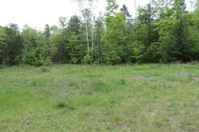Essex County Residential Lots & Land For Sale: Brookside Way