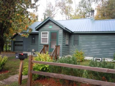 Saranac Lake Single Family Home For Sale: 43 State Street