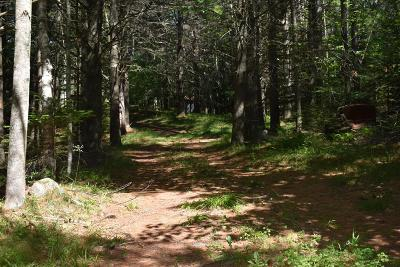 Saranac Lake NY Residential Lots & Land For Sale: $40,000